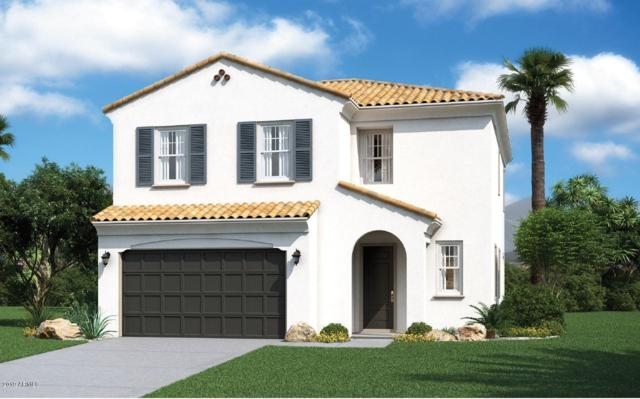 5739 S 29TH Place, Phoenix, AZ 85040 (MLS #5900803) :: Phoenix Property Group