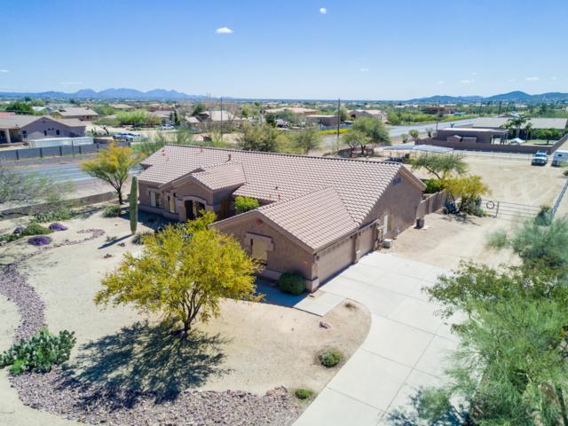 513 E Jordon Lane, Phoenix, AZ 85086 (MLS #5900815) :: Phoenix Property Group