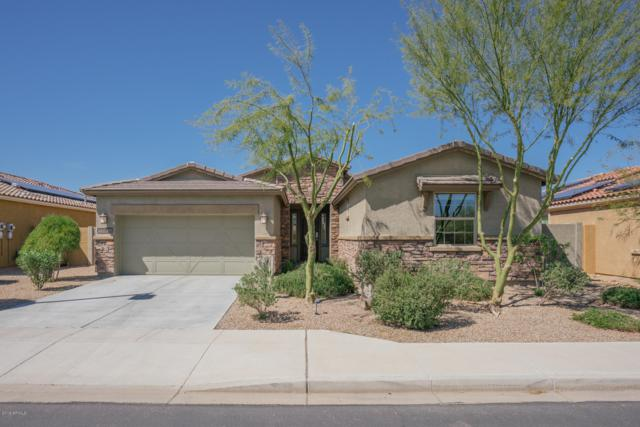 12812 S 184TH Avenue, Goodyear, AZ 85338 (MLS #5900825) :: Kortright Group - West USA Realty