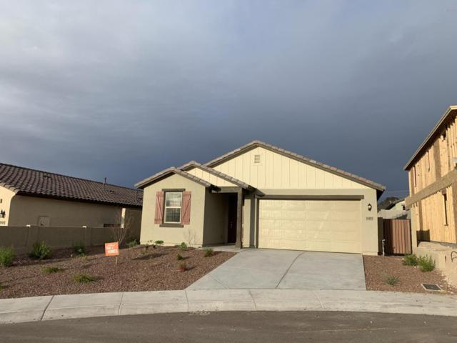 11423 S Copper Court, Goodyear, AZ 85338 (MLS #5900866) :: The W Group