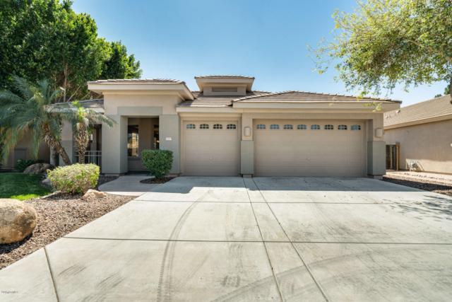 12615 W Highland Avenue, Litchfield Park, AZ 85340 (MLS #5900888) :: The Bill and Cindy Flowers Team