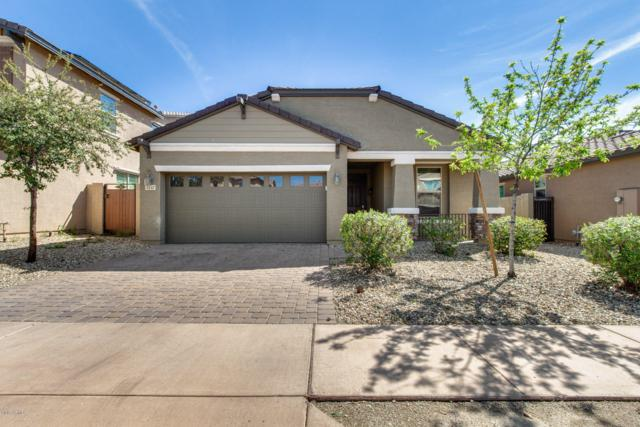 3247 W Gran Paradiso Drive, Phoenix, AZ 85086 (MLS #5900895) :: Devor Real Estate Associates