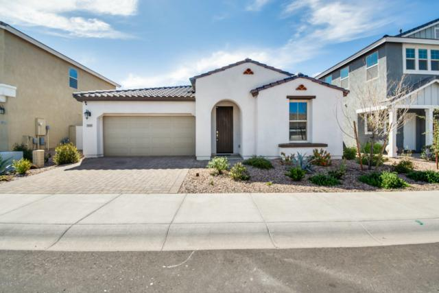 9909 E Kinetic Drive, Mesa, AZ 85212 (MLS #5900919) :: The Jesse Herfel Real Estate Group