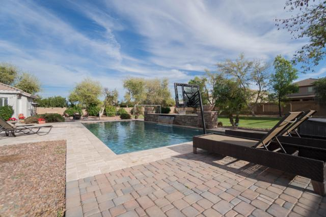3339 E Vallejo Court, Gilbert, AZ 85298 (MLS #5900922) :: The Jesse Herfel Real Estate Group