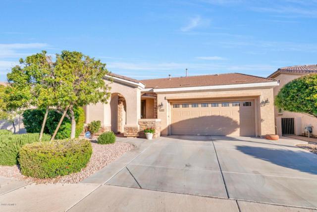 4466 E Jude Lane, Gilbert, AZ 85298 (MLS #5900929) :: The Jesse Herfel Real Estate Group