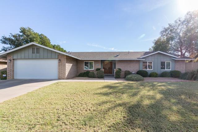 2935 E Cochise Road, Phoenix, AZ 85028 (MLS #5900978) :: Yost Realty Group at RE/MAX Casa Grande