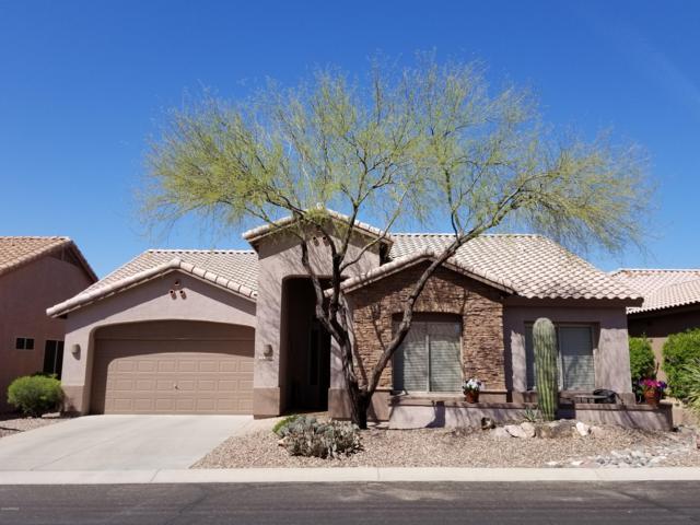 5332 S Cat Claw Drive, Gold Canyon, AZ 85118 (MLS #5901063) :: Yost Realty Group at RE/MAX Casa Grande