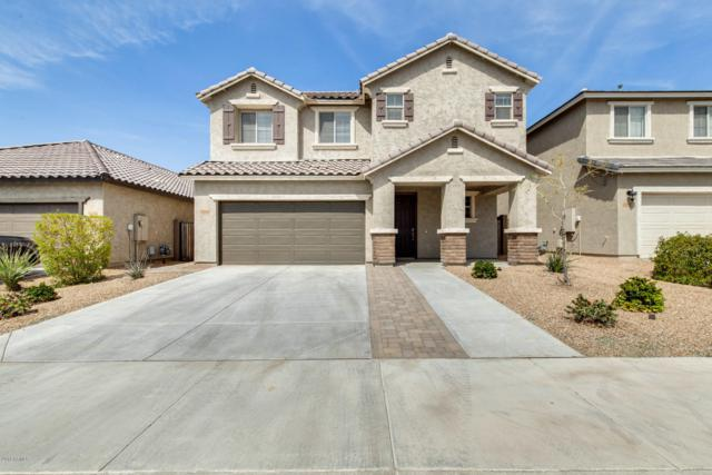 12124 W Tether Trail, Peoria, AZ 85383 (MLS #5901071) :: Yost Realty Group at RE/MAX Casa Grande