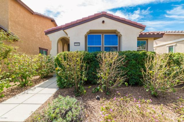 15349 W Bloomfield Road, Surprise, AZ 85379 (MLS #5901079) :: Yost Realty Group at RE/MAX Casa Grande