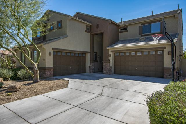 4317 E Hashknife Road, Phoenix, AZ 85050 (MLS #5901183) :: RE/MAX Excalibur