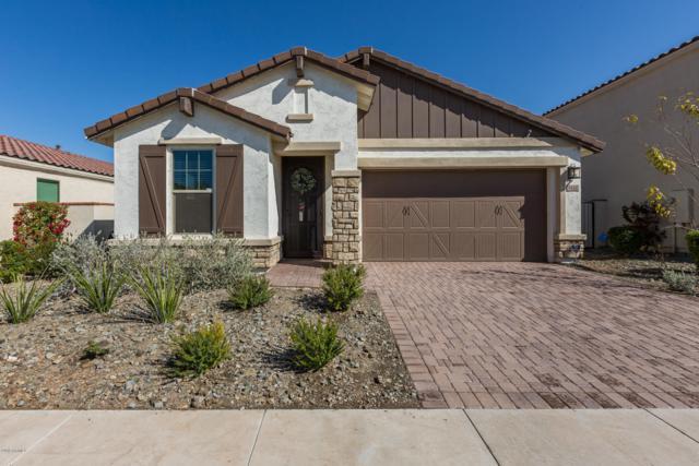 9860 E Theia Drive, Mesa, AZ 85212 (MLS #5901200) :: Keller Williams Realty Phoenix