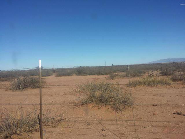 XXXX Az-80 Highway, Douglas, AZ 85607 (MLS #5901233) :: RE/MAX Excalibur