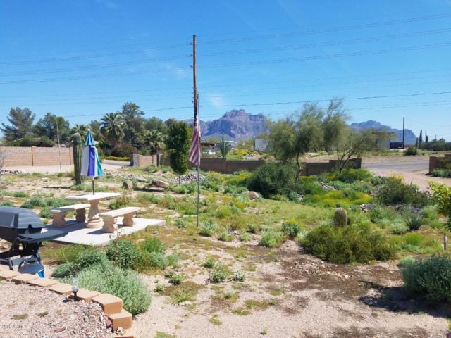 626 N Tomahawk Road, Apache Junction, AZ 85119 (MLS #5901263) :: Yost Realty Group at RE/MAX Casa Grande