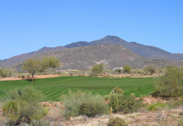 36490 N 100TH Way, Scottsdale, AZ 85262 (MLS #5901264) :: The Laughton Team