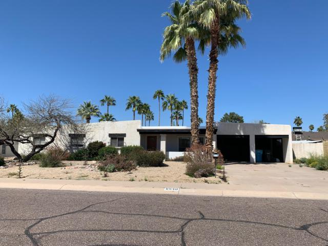6540 E Dreyfus Avenue, Scottsdale, AZ 85254 (MLS #5901291) :: Keller Williams Realty Phoenix