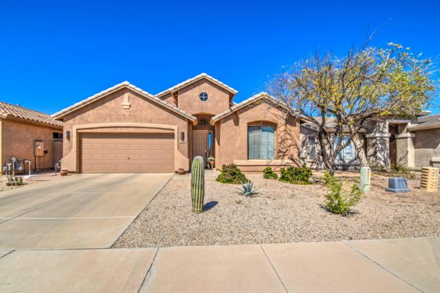 29856 N Yellow Bee Drive, San Tan Valley, AZ 85143 (MLS #5901301) :: Keller Williams Realty Phoenix