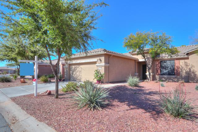 20535 N Lemon Drop Drive, Maricopa, AZ 85138 (MLS #5901343) :: Occasio Realty