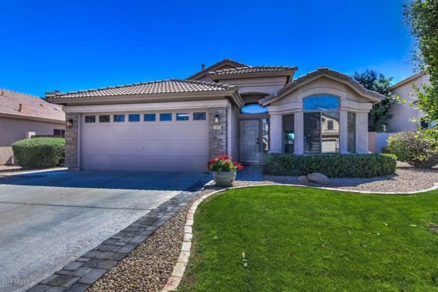 1863 W Canyon Way, Chandler, AZ 85248 (MLS #5901369) :: Door Number 2