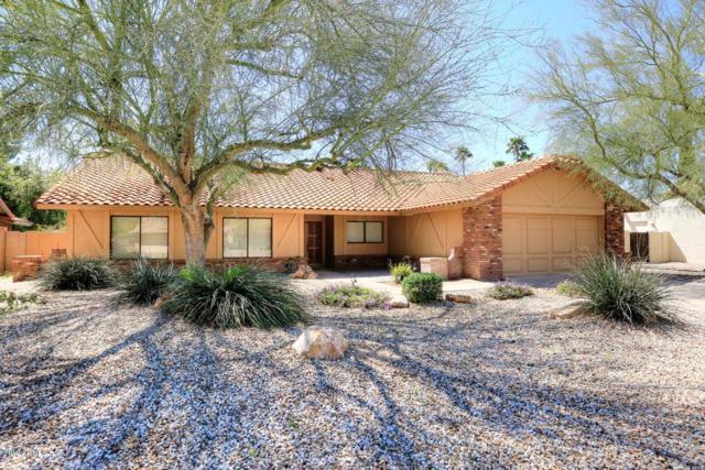 7631 E Charter Oak Road, Scottsdale, AZ 85260 (MLS #5901371) :: Door Number 2