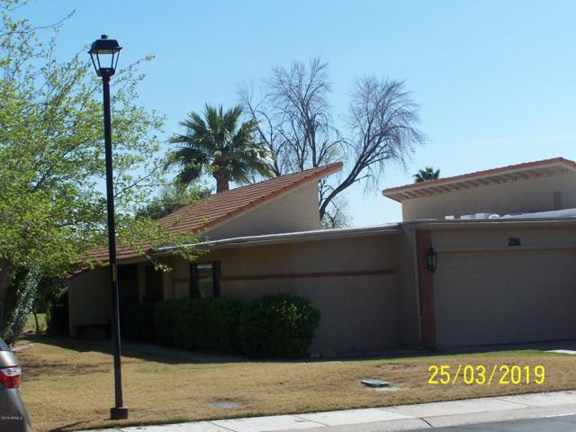 291 Leisure World, Mesa, AZ 85206 (MLS #5901376) :: Door Number 2