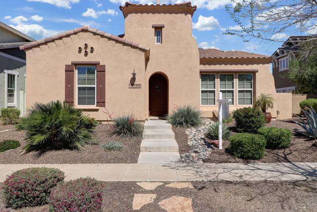 15366 W Charter Oak Road, Surprise, AZ 85379 (MLS #5901401) :: Yost Realty Group at RE/MAX Casa Grande