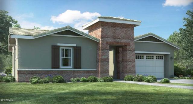 20635 W Clearstream Drive, Buckeye, AZ 85396 (MLS #5901461) :: The Results Group