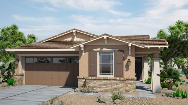 20775 W Pasadena Avenue, Buckeye, AZ 85396 (MLS #5901556) :: Team Wilson Real Estate