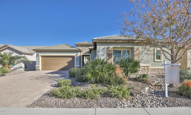 6688 W Desert Blossom Way, Florence, AZ 85132 (MLS #5901620) :: Lux Home Group at  Keller Williams Realty Phoenix
