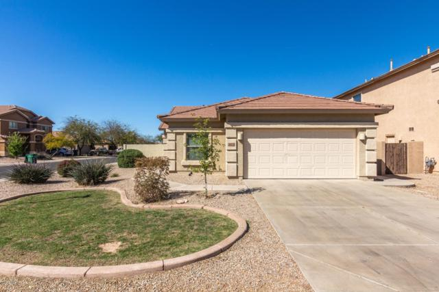 44454 W Knauss Drive, Maricopa, AZ 85138 (MLS #5901720) :: Yost Realty Group at RE/MAX Casa Grande