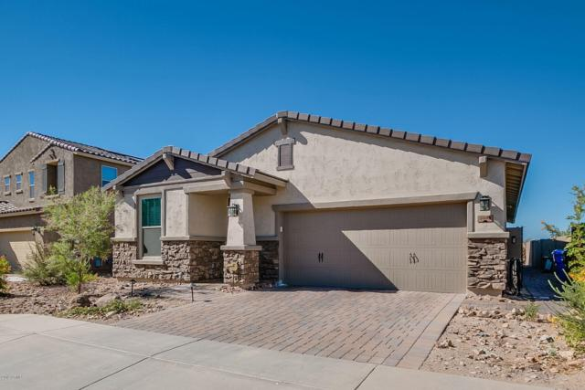3003 W Woburn Lane, Phoenix, AZ 85085 (MLS #5901793) :: Yost Realty Group at RE/MAX Casa Grande