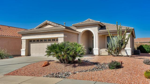 17922 N Coconino Drive, Surprise, AZ 85374 (MLS #5901812) :: Occasio Realty