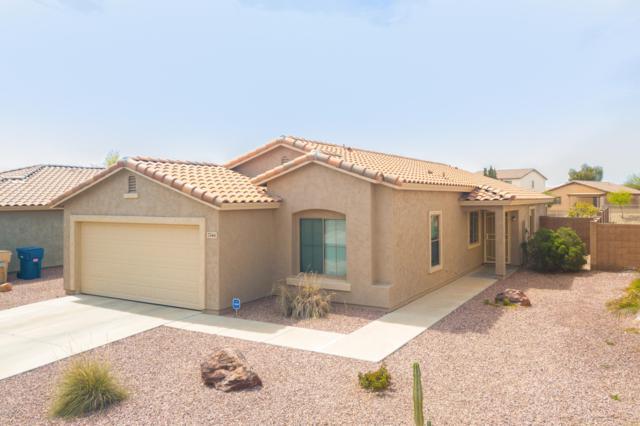 7244 S Sunrise Way, Buckeye, AZ 85326 (MLS #5901828) :: RE/MAX Excalibur