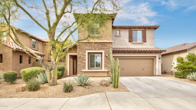 3718 E Matthew Drive, Phoenix, AZ 85050 (MLS #5901913) :: CC & Co. Real Estate Team