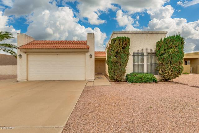 9623 E Palomino Place, Sun Lakes, AZ 85248 (MLS #5901924) :: Yost Realty Group at RE/MAX Casa Grande