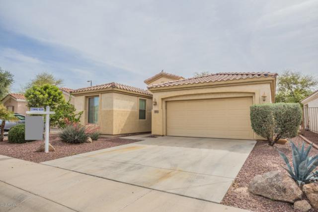 5281 S Harvest Street, Gilbert, AZ 85298 (MLS #5901942) :: Yost Realty Group at RE/MAX Casa Grande