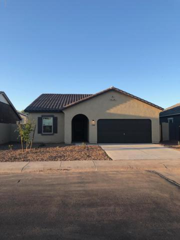 37040 W Capri Avenue, Maricopa, AZ 85138 (MLS #5901944) :: Team Wilson Real Estate