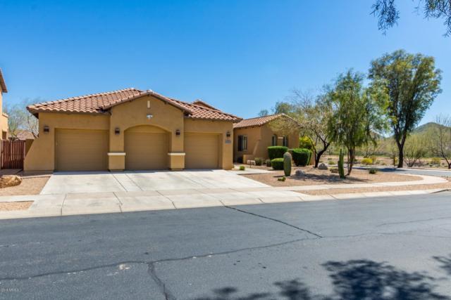 31509 N 19th Avenue, Phoenix, AZ 85085 (MLS #5901960) :: Yost Realty Group at RE/MAX Casa Grande