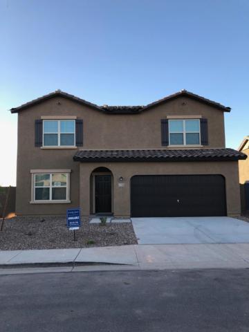 37224 W Cannataro Lane, Maricopa, AZ 85138 (MLS #5901973) :: Yost Realty Group at RE/MAX Casa Grande