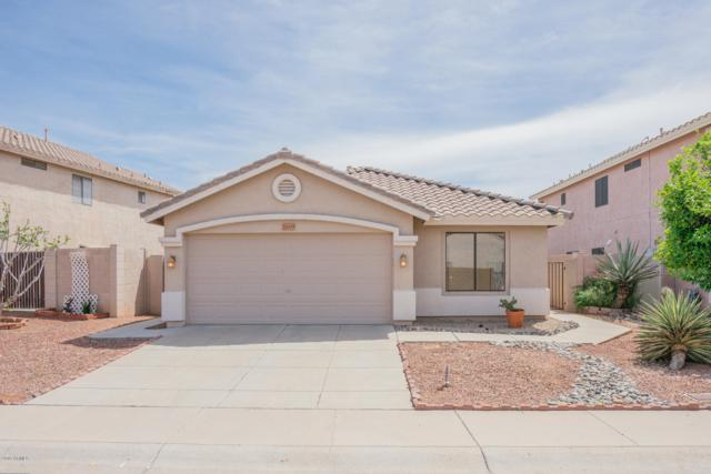 20435 N 37TH Avenue, Glendale, AZ 85308 (MLS #5901987) :: The Everest Team at My Home Group