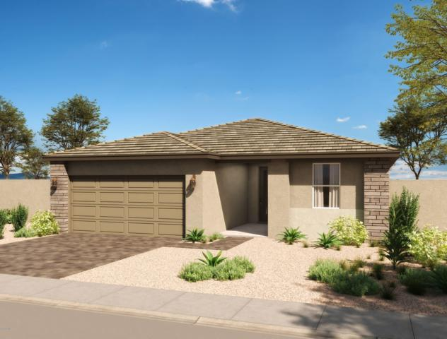 19889 W Moonlight Path, Buckeye, AZ 85326 (MLS #5901995) :: Scott Gaertner Group
