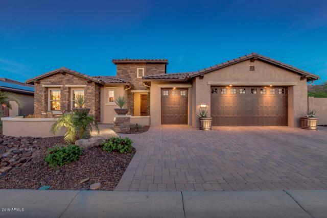 2117 N 166TH Drive, Goodyear, AZ 85395 (MLS #5902004) :: Yost Realty Group at RE/MAX Casa Grande