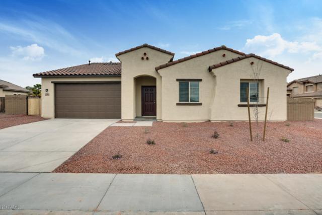 394 E Ocean View Drive, Casa Grande, AZ 85122 (MLS #5902005) :: Yost Realty Group at RE/MAX Casa Grande