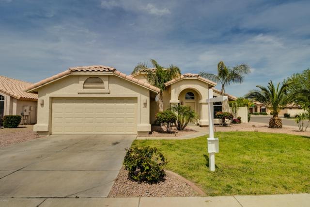 12326 W Windsor Avenue, Avondale, AZ 85392 (MLS #5902008) :: Yost Realty Group at RE/MAX Casa Grande