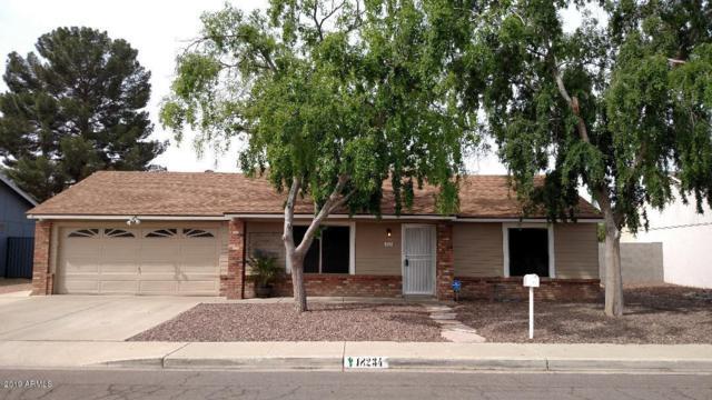 18234 N 56TH Lane, Glendale, AZ 85308 (MLS #5902029) :: Yost Realty Group at RE/MAX Casa Grande