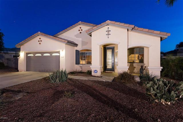 8775 W State Avenue, Glendale, AZ 85305 (MLS #5902054) :: Yost Realty Group at RE/MAX Casa Grande