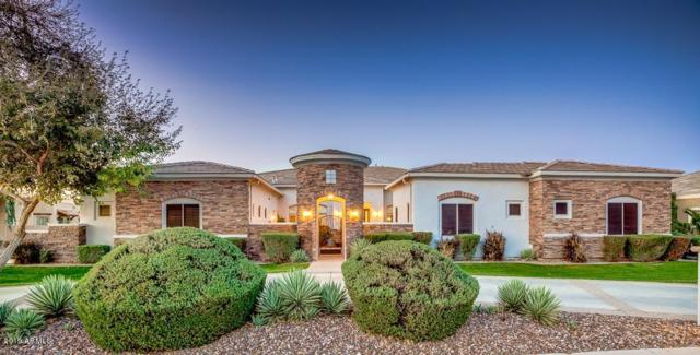 3014 E Portola Valley Drive, Gilbert, AZ 85297 (MLS #5902085) :: The Kenny Klaus Team