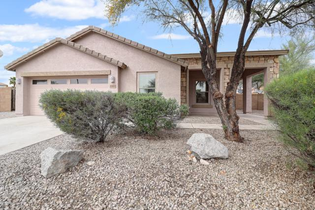 3303 S 256TH Drive, Buckeye, AZ 85326 (MLS #5902117) :: Lux Home Group at  Keller Williams Realty Phoenix