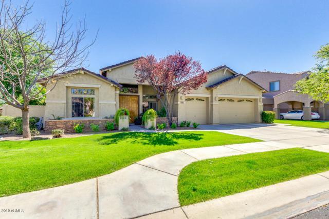 273 W Macaw Drive, Chandler, AZ 85286 (MLS #5902243) :: Riddle Realty