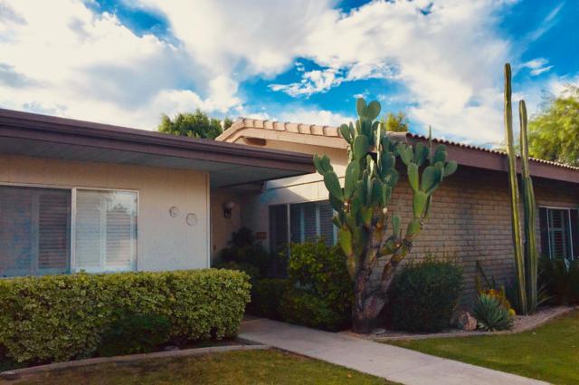 4800 N 68TH Street #288, Scottsdale, AZ 85251 (MLS #5902268) :: Yost Realty Group at RE/MAX Casa Grande