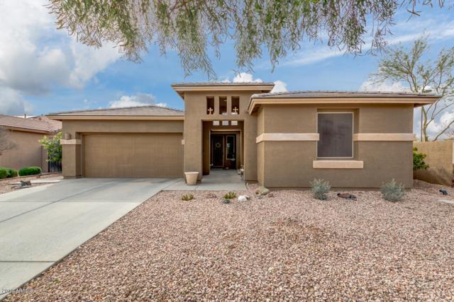24106 N 164TH Avenue, Surprise, AZ 85387 (MLS #5902283) :: Occasio Realty